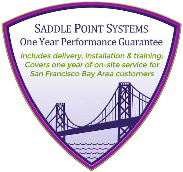 Saddle Point Systems One Year Performance Guarantee